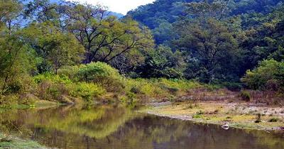 The world famous Corbett National Park is famous in terms of biodiversity.